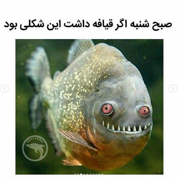 عکس خنده دار + عکس نوشته های طنز اینستاگرامی + متن های خنده دار (310)