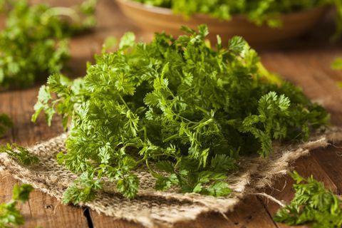 سبزی هایی که می توانید در خانه بکارید | فوت و فن + خواص سبزی ها