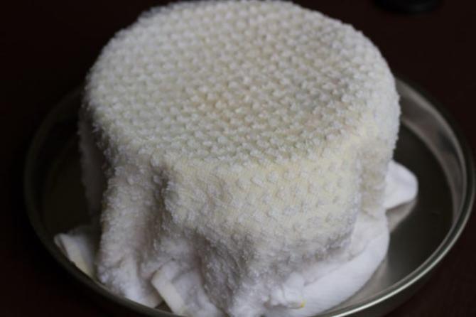 آموزش کاشت سبزه عید | تنگ ماهی و ظرف شفاف پلاستیکی