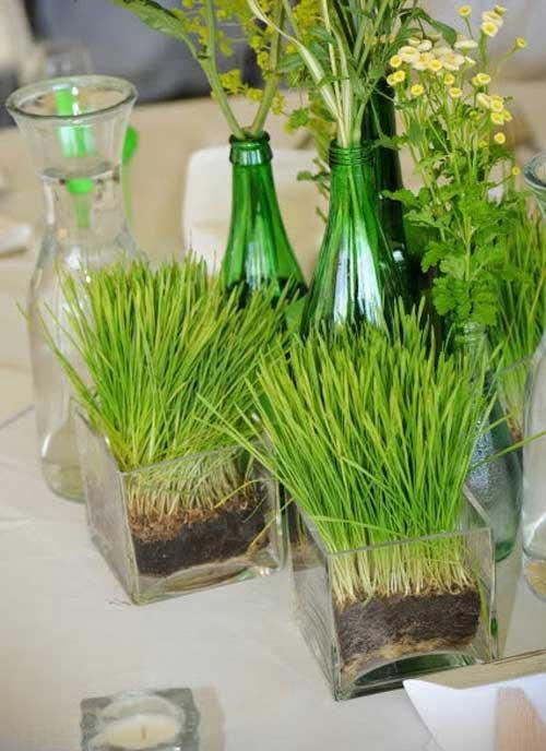 مدل سبزه عید نوروز 99 + آموزش کاشت انواع سبزه برای عید 1399