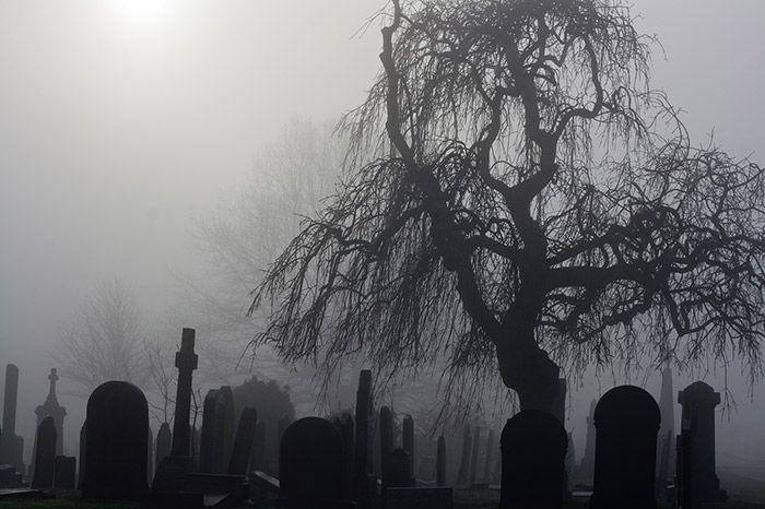 تعبیر خواب قبر و قبرستان   دیدن خواب قبر چه تعبیری دارد؟
