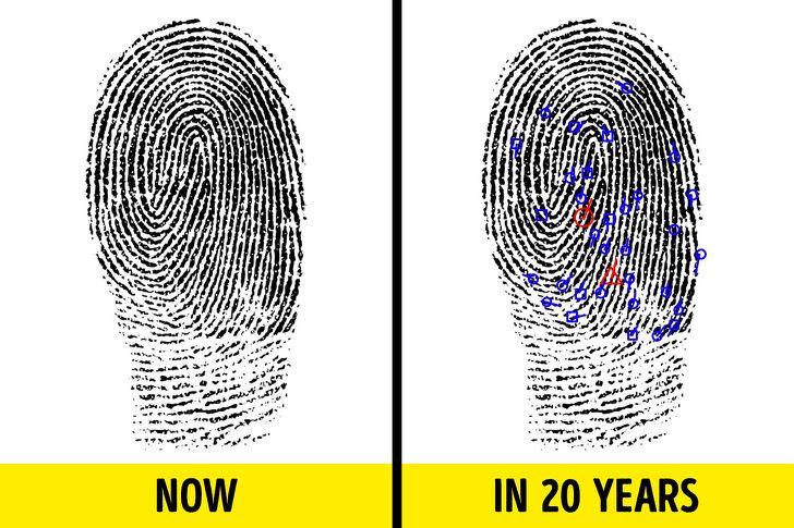 تغییرات بدن با افزایش رفتن سن | چه کنیم تا دیرتر پیر شویم؟