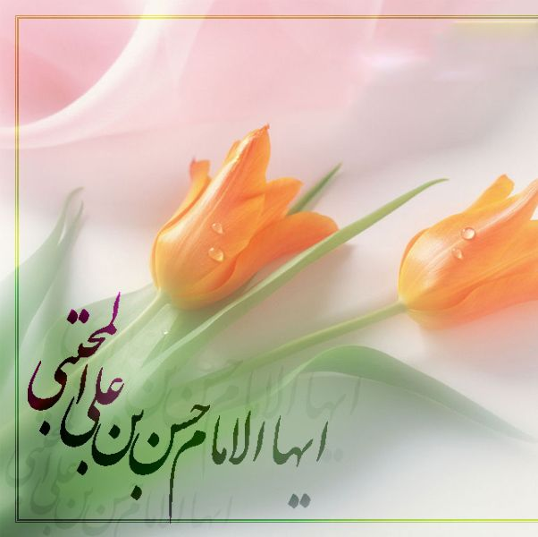 متن تبریک ولادت امام حسن مجتبی ۹۹ (شعر، متن ادبی، دل نوشته)