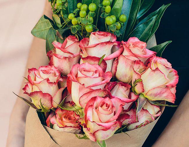رازها و اصول نگهداری گیاهان در گلدان (تقویت گل و گیاه در منزل)
