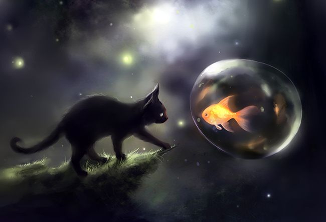 تعبیر خواب گربه   دیدن خواب گربه چه تعابیری دارد؟