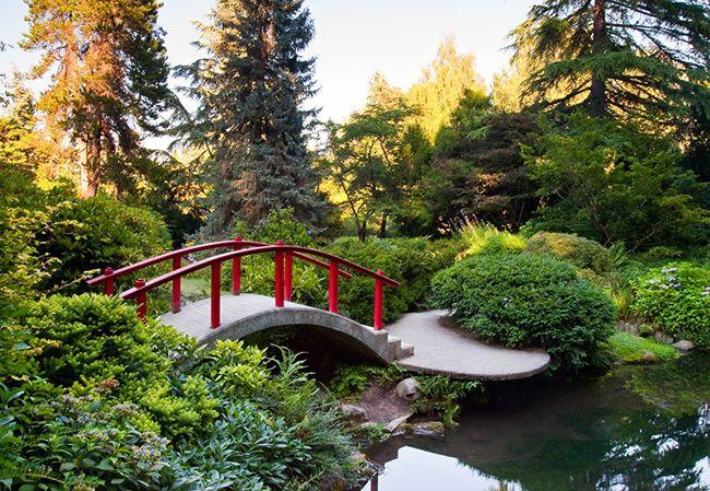 تعبیر خواب باغ | دیدن باغ در خواب چه تعابیری دارد؟