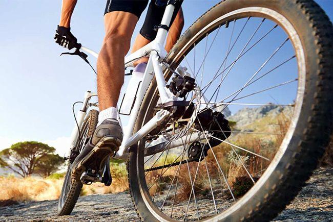 20 فایده مهم دوچرخه سواری + توصیه های مفید برای دوچرخه سواران