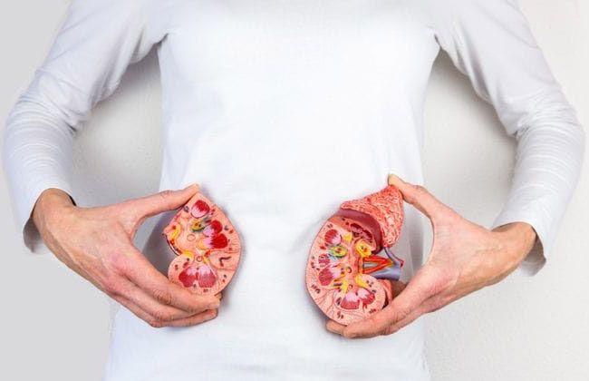 17 روش خانگی برای دفع سنگ کلیه + علائم و راه های درمان سنگ کلیه