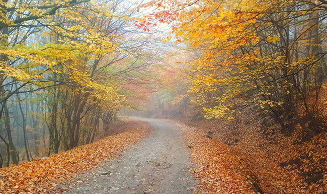 در پاییز به کدام شهرها سفر کنیم؟