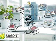 طراحی سایت | طراحی سایت حرفه ای در انواع cms