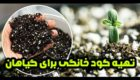 طرز تهیه کود خانگی | 5 کود خانگی عالی برای گیاهان آپارتمانی