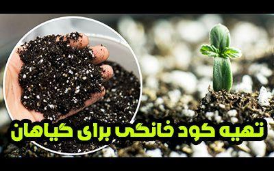 طرز تهیه کود خانگی   5 کود خانگی عالی برای گیاهان آپارتمانی