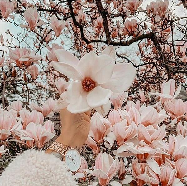 عکس پروفایل عاشقانه بهاری + جملات و اشعار زیبای عاشقانه در مورد فصل بهار
