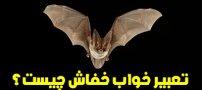 تعبیر خواب خفاش | دیدن خفاش در خواب چه تعابیری دارد؟
