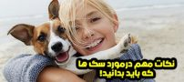 نکات مهم در مورد سگ ها که باید بدانید | دانستنی های مهم درباره سگ ها