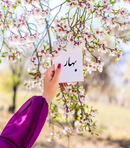 عکس پروفایل بهاری جدید + متن ها و اشعار زیبا درباره فصل بهار