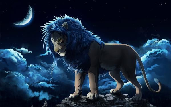 تعبیر خواب شیر جنگل | دیدن شیر در خواب چه تعابیری دارد؟