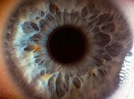 تصاویری شگفت انگیز از چشم انسان