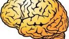 روش خوانده شدن کلمات در مغز