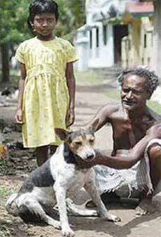 نمایش پست :عکس ازدواج اجباری دختر 9 ساله با یک سگ