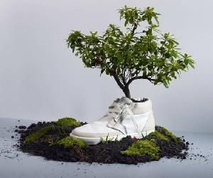 آینده دنیای مد در گروی آشتی با طبیعت (کفش سبز)