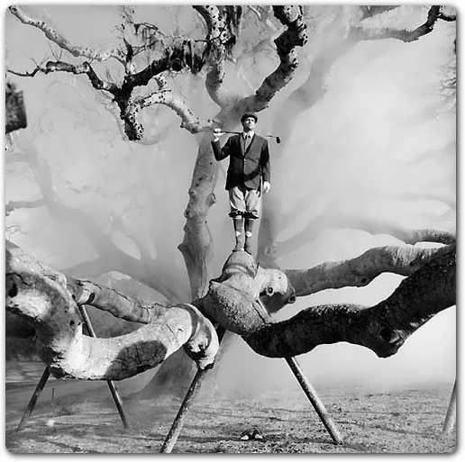 نمایش پست :تصاویر سیاه و سفید زیبا از آثار عکاس های مشهور دنیا