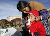 طولانی شدن عمر با خوردن شیر الاغ + عکس