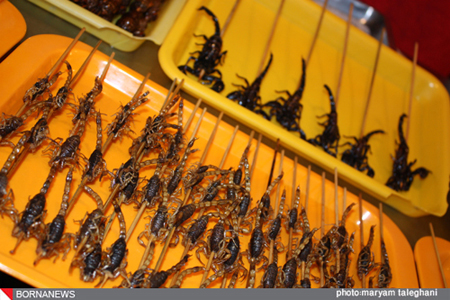عکس هایی دیدنی و چندش آور از کباب هزار حیوان
