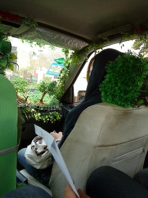 تاکسی جالب جنگلی در تهران!! + عکس