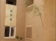 اولین پروژه ساختمان سازی به سبک تاریخی ( تصویری)