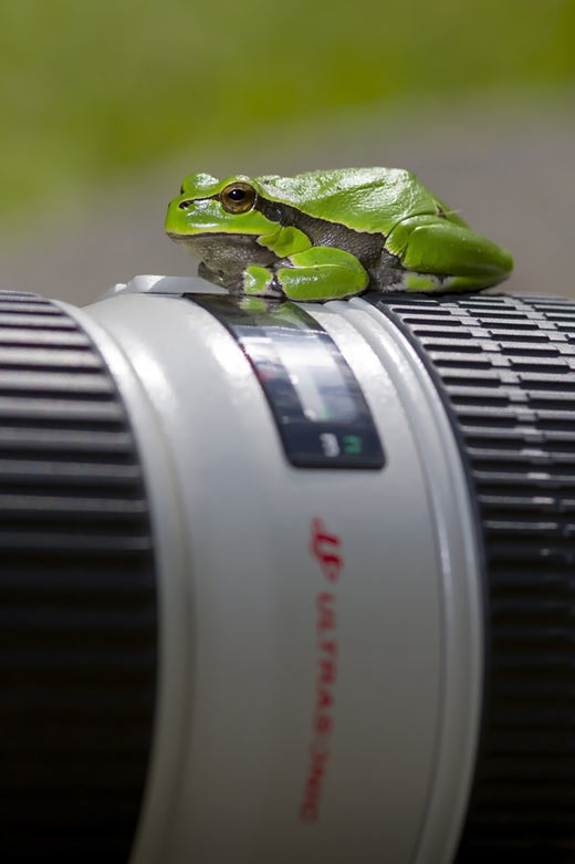عکس های ناب و حیرت انگیز!!