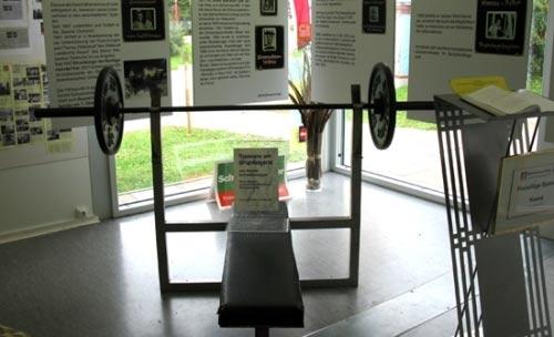 افتتاح موزه آرنولد در اتریش (+عکس)