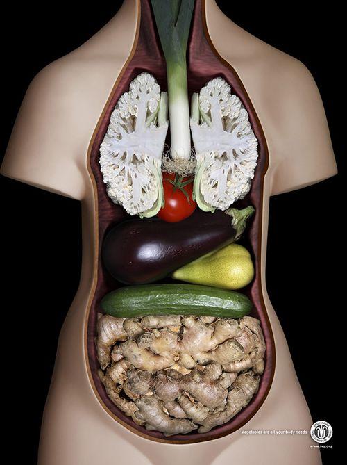 تصاویری از خوردن غذا های چندش آور