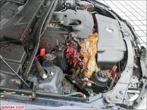 می دونی فرق BMW و پراید چیه؟!