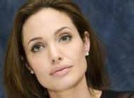 رسانه های عربی درباره استقبال ایران از سفر آنجلینا جولی