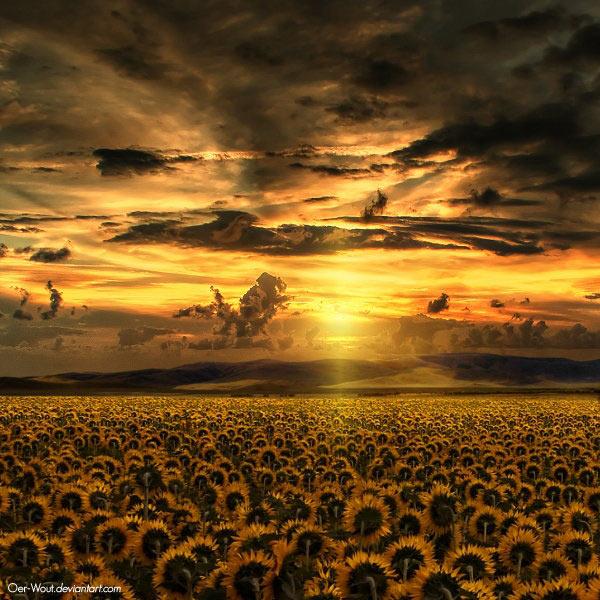 عکس های بسیار زیبا از طبیعت های رویایی