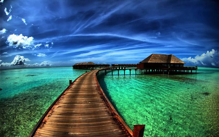 عکس های زیبا و منتخب جهان
