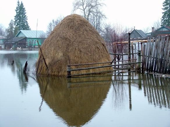 عکس هایی از یک منطقه روسیه که شبیه به شهره ونیز شد