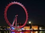 بلندترین چرخ و فلک + عکس