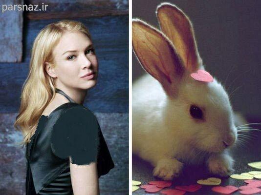 شباهت هنرمندان معروف جهان به جانوران + عکس