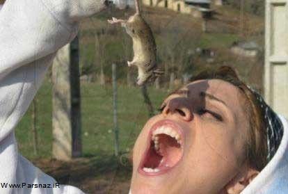 www.parsnaz.ir - خوردن موش توسط دختر ایرانی + تصویر