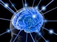 با انجام این تست مغز شما هنگ خواهد کرد!!!