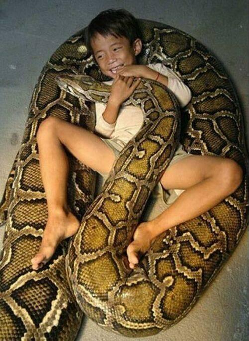 عکس های عجیب از باور نکردنی ترین دوستی جهان