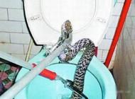 حتی در دستشویی هم نمی توان امنیت داشت + عکس