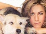بازیگری که خانه ۴ میلیار تومانی خود را به نام سگش کرد