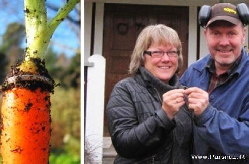 حلقه ازدواجی که بعد از 16 سال این زن را شوکه کرد +عکس