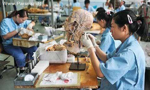 وقتی چینی ها حتی انسان تقلبی می سازند + عکس
