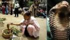 ازدواج بسیار عجیب زن 30 ساله با یک مار کبری + عکس