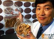 ساخت گوشت مصنوعی با مدفوع انسان توسط ژاپنی ها (+تصاویر)..!
