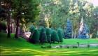 عکس تالاری در منطقه ی فرمانیه ی تهران !
